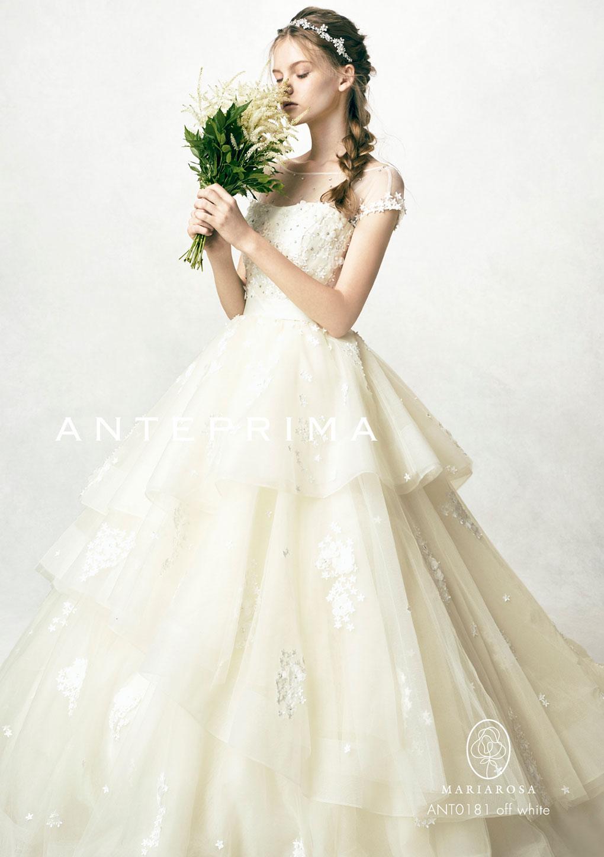 ANT0181ow